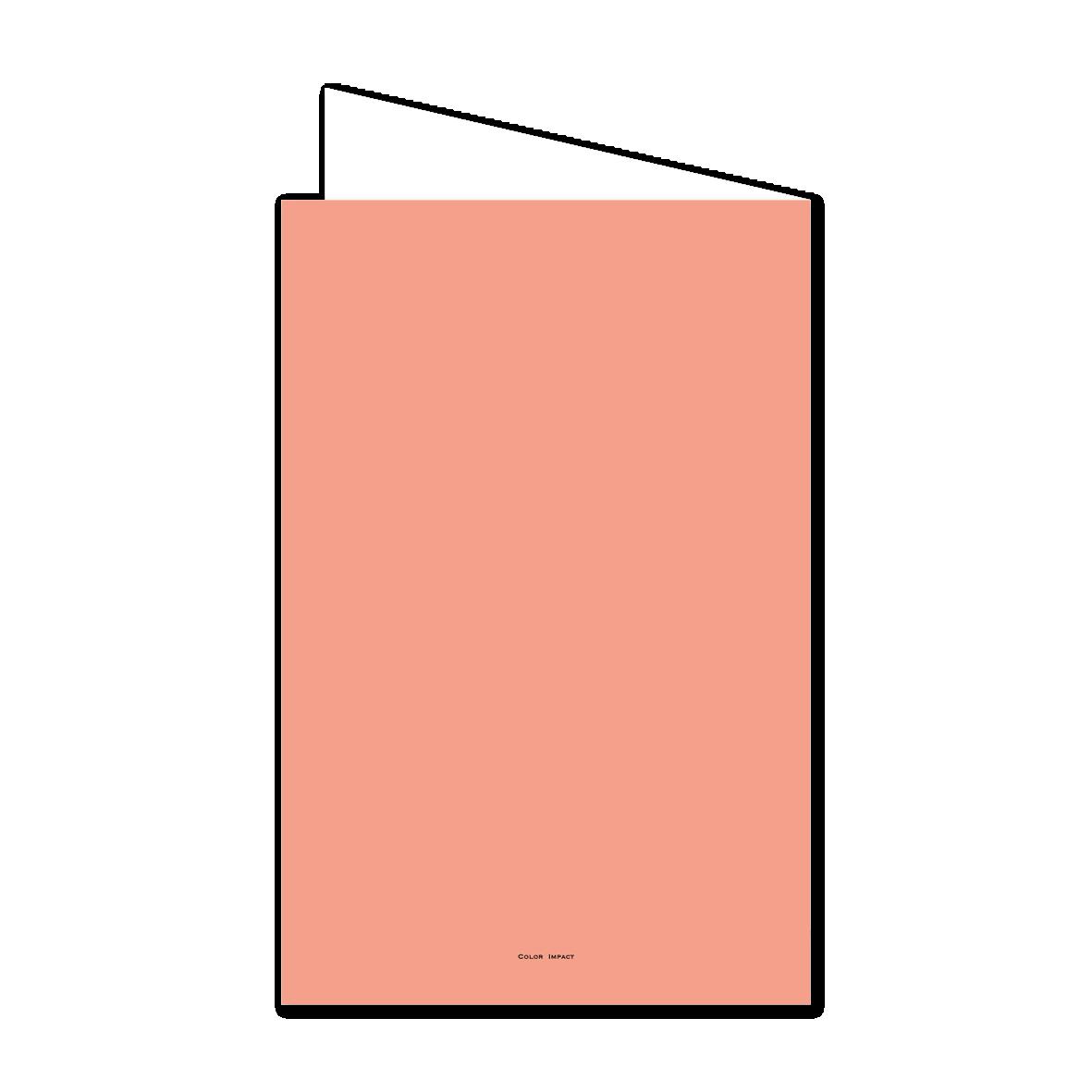 model-image